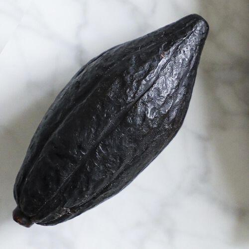 Hot Chocolat Cacao Pod Soap, , hi-res