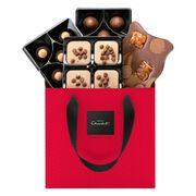 Caramel Chocolate Selector Gift Box – Christmas , , hi-res