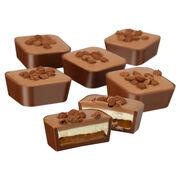 Chocolate Caramel Cheesecake Selector, , hi-res