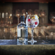 Cocoa Gin & Tonic Cocktail Recipe, , hi-res